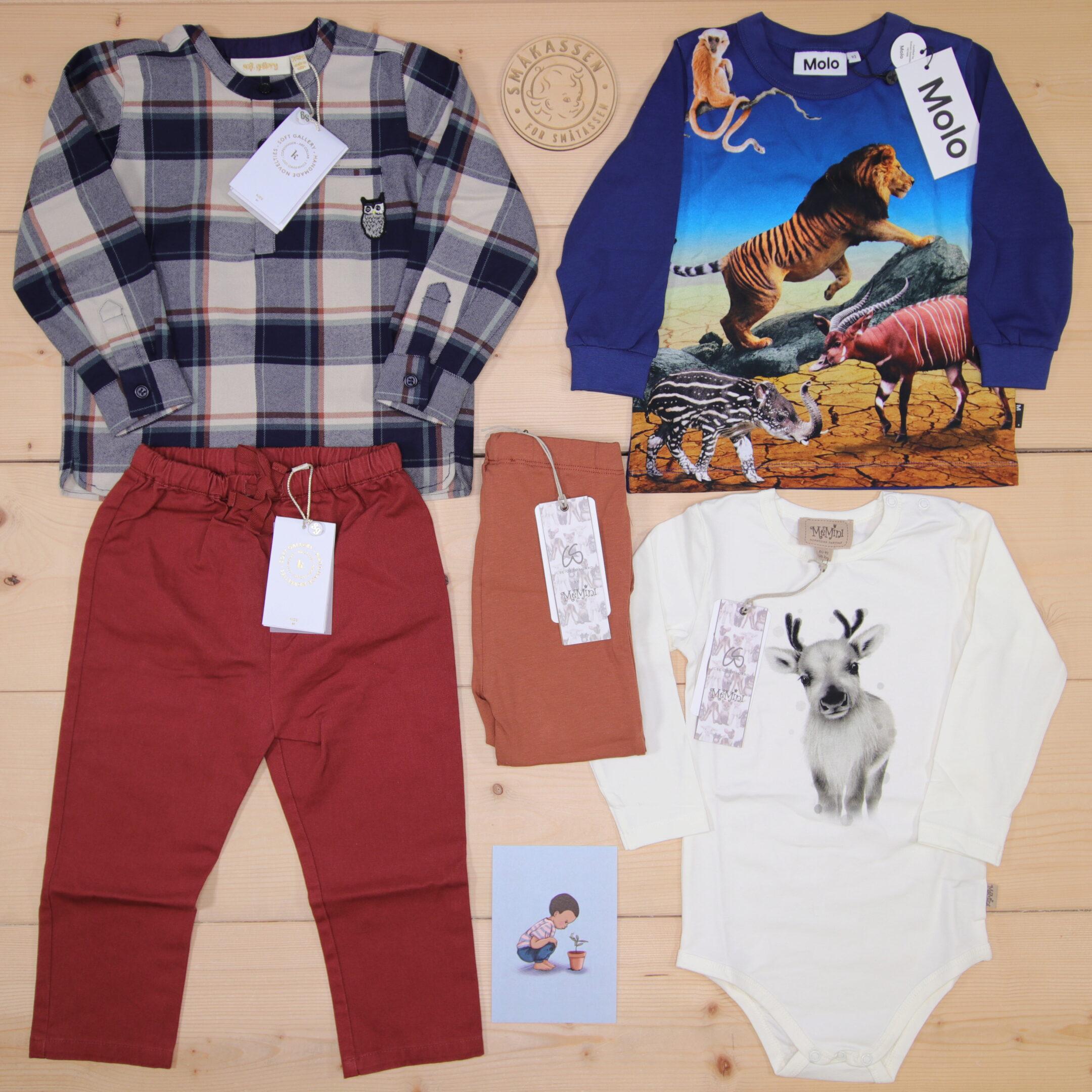 Dette er en 2000 NOK* The Childish Stylist som vi forberedte for en gutt i stilene cool og cute i størrelse 92